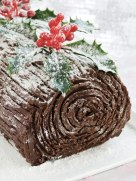 chocolate yule-log